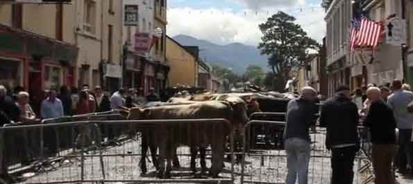 Video: Puck Fair, County Kerry